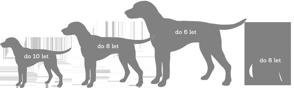 Podmínky vstupu zvířete do pojištění PetExpert