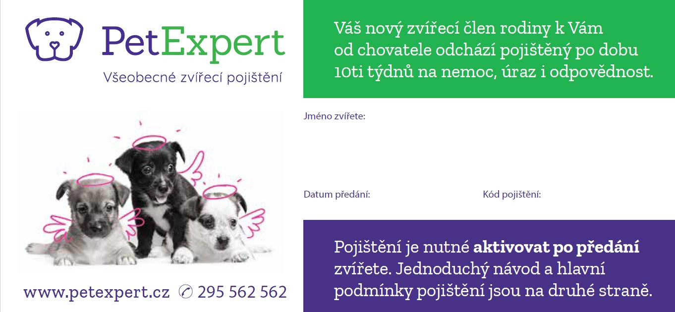 Prodej štěněte a kotěte s pojištěním je pro chovatele výhodné