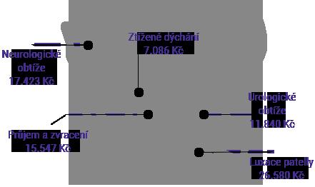 Pojištění kočky hradí léčbu nemoci a úrazu
